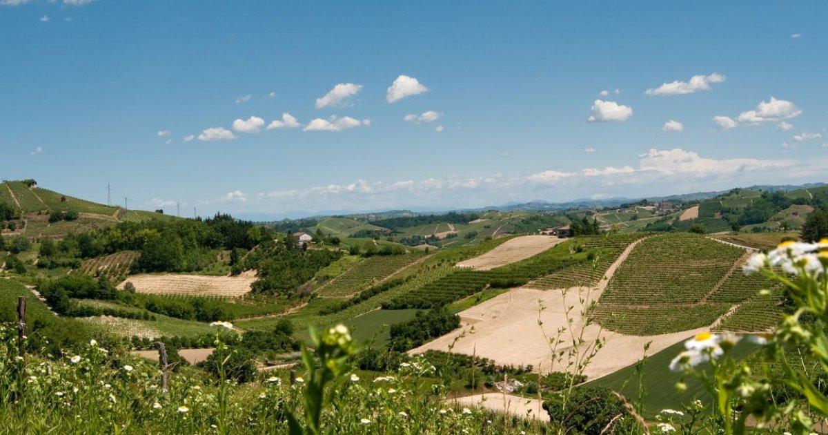 Bra e Roero: viaggio alla scoperta di un Piemonte che vi stregherà davvero | Guide Marco Polo